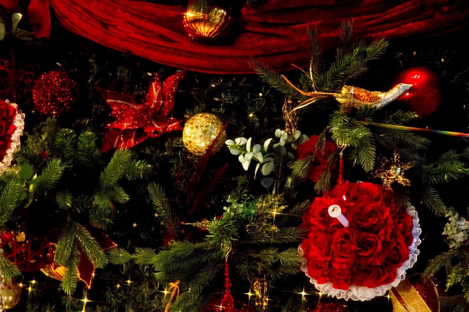 クリスマス特別ディナー 宿泊プラン